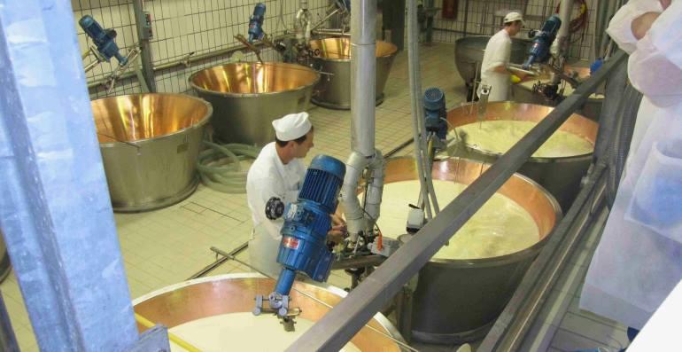 Производство сливочного масла как бизнес